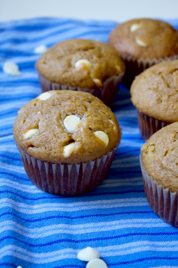 Pumpkin White Chocolate Chip Bread Muffin Or Cake Recipe